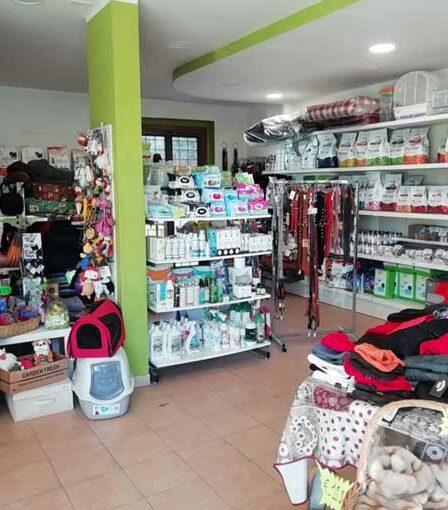 Coccole Chic Pet Shop Morena